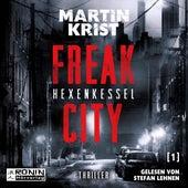 Hexenkessel - Freak City, Band 1 (Ungekürzt) von Martin Krist