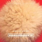NURMAGOMEDOW EP von Farid Bang