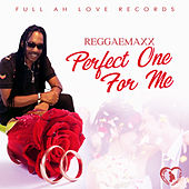 Perfect One for Me de Reggae Max