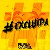 #Excluída de Filipe e Gabriel