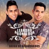 Briga de Apaixonados de Leandro e Ronaldo