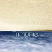 Relief von Trimonic