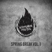 Spring Break, Vol. 1 de Various