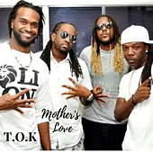 Mother's Love by T.O.K.