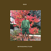 Introspection by EGO