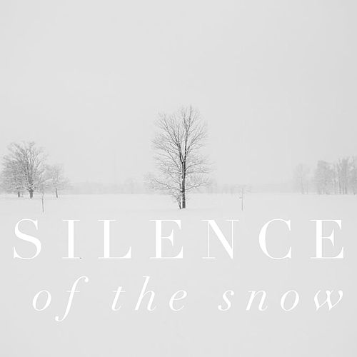 Silence of the Snow von Abby Mettry