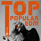 Top Popular EDM: Electro House, Festival Mix, Best Club & Party Hits von Various Artists