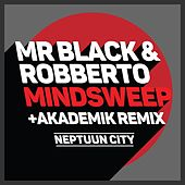 Mindsweep de Mr Black