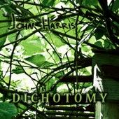 Dichotomy by John Harris