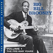 Vol. 1: The Pre-War Years de Big Bill Broonzy