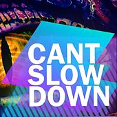 Cant Slow Down by Dalton Rimmer