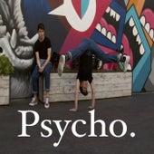 Psycho de Mirror Image