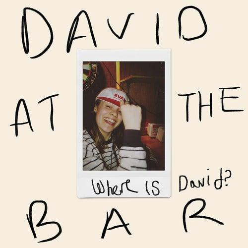 David At The Bar de Jerry Williams