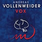 Vox de Andreas Vollenweider