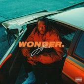 Wonder de Jay Prince
