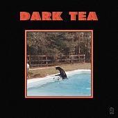 Rolling Back the Dial (feat. Hand Habits) de Dark Tea