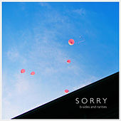 B-Sides and Rarities von Sorry