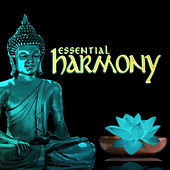 Essential Harmony by John Toso