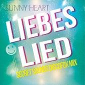 Liebeslied (Secret Sounds Discofox Mix) de Sunny Heart