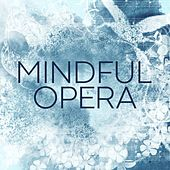 Mindful Opera by Various Artists
