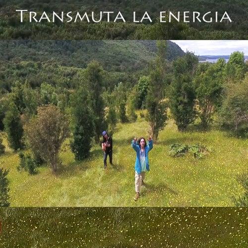 Transmuta la Energía de Boker mc