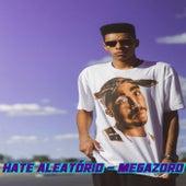 Megazord by Hate Aleatório