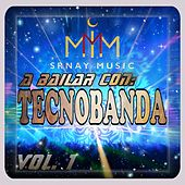 A Bailar Con TecnoBanda, Vol. 1 de Various Artists