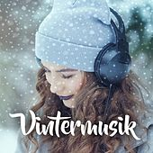 Vintermusik by Various Artists