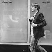 Vagabond by Steve Gunn