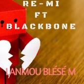 Lanmou Blésé M (feat. Blackbone) de Remi