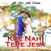 Koe Nahi Tere Jesa - Single by Sher Ali