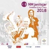 Nm Janitsjar 2018 - 2 Divisjon von Various Artists