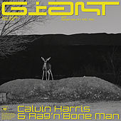 Giant de Calvin Harris & Rag'n'Bone Man