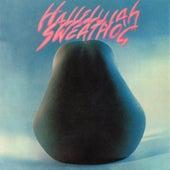 Hallelujah by Sweathog