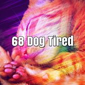 68 Dog Tired von Best Relaxing SPA Music