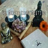 42 Meditation Meeting von Massage Therapy Music