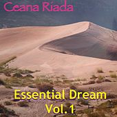 Essential Dreaming, Vol. 1 von Various Artists