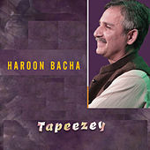 Tapeezey by Haroon Bacha