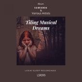 Tiling Musical Dreams - EP de Various Artists