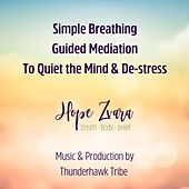 Simple Breathing: Guided Meditation to Quiet the Mind & De-Stress von Thunderhawk Tribe