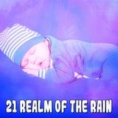 21 Realm Of The Rain de Thunderstorm Sleep