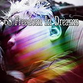 68 Freedom In Dreams de White Noise Babies