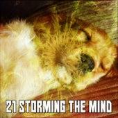 21 Storming The Mind de Thunderstorm Sleep