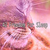 42 Freedom For Sleep by Ocean Sounds Collection (1)