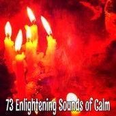 73 Enlightening Sounds of Calm de Meditación Música Ambiente