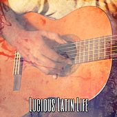 Lucious Latin Life by Guitar Instrumentals