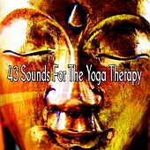 43 Sounds For The Yoga Therapy de Asian Traditional Music