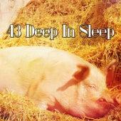 43 Deep In Sleep de Sleepicious