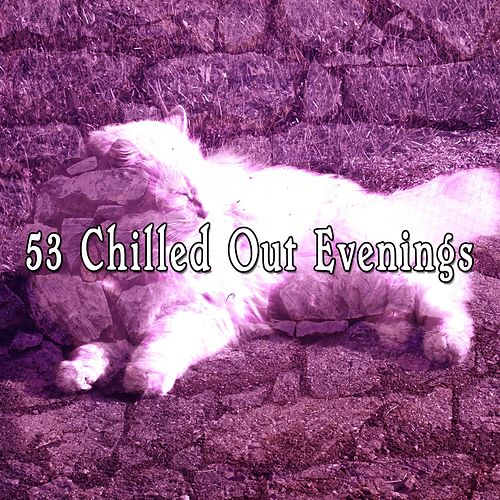 53 Chilled Out Evenings de Smart Baby Lullaby