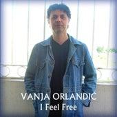 I Fell Free de Vanja Orlandic